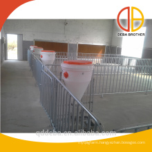 finishing crates for pigs fatten pig crates design hot galvanized pig crates